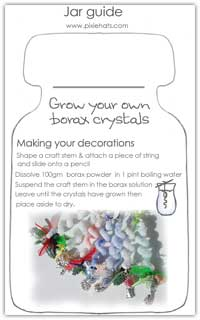 Jar guide to growing own borax crystal decorations