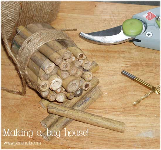 Make a bug house for your garden insects to overwinter in