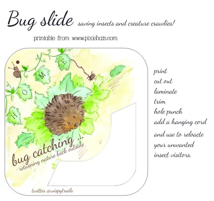 Hedgehog bunting themed insect bug slide printable