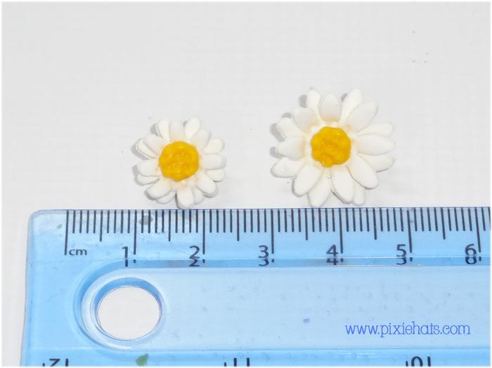 Daisy beach size